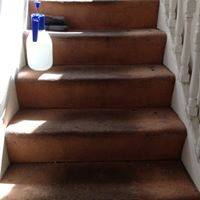 carpet cleaners Eltham